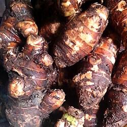 Khoai sọ Mán Mộc Châu – Món ăn đậm chất vùng cao Tây Bắc